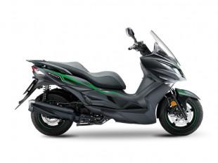 Kawasaki J300 (SE)